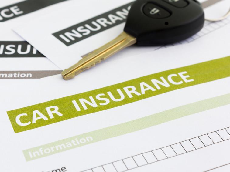 cat n car insurance